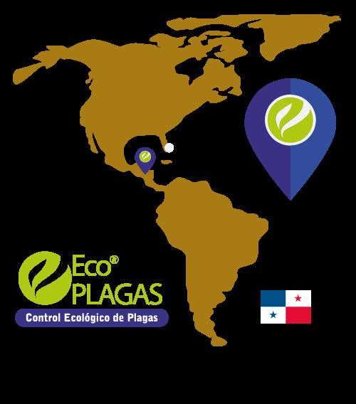 mapa-ecoplagas-panamasolo